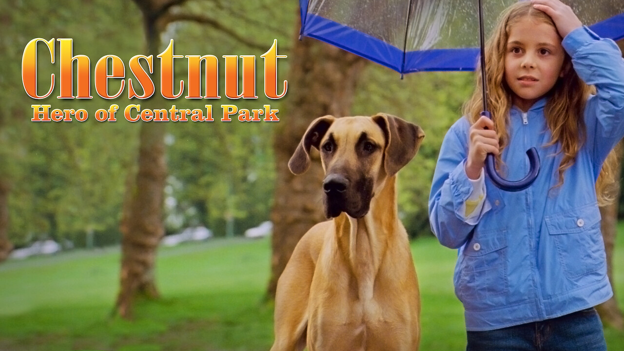 Chestnut: Hero of Central Park on Netflix UK