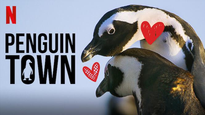 Penguin Town on Netflix UK